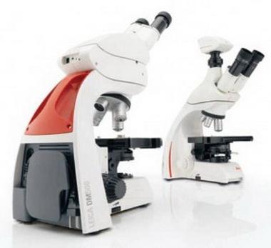 Световой микроскоп.