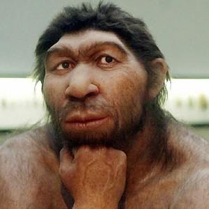 Иммунитет современного человека усилили гены неандертальцев